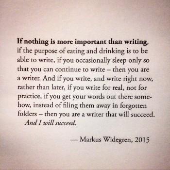 Writer Markus Widegren